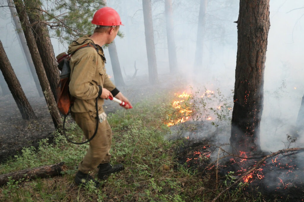 Руководитель тушения крупных лесных пожаров, Руководитель тушения крупных лесных пожаров обучение, Руководитель тушения крупных лесных пожаров курсы